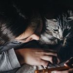 How technology can help keep your cat fit in Cheshire